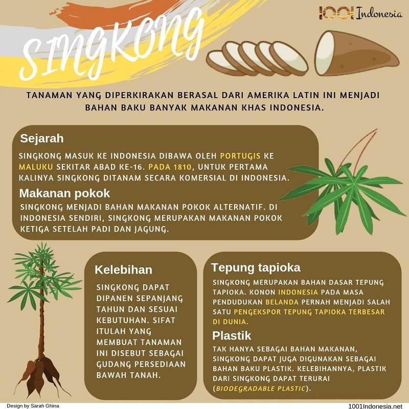 Infografis Singkong