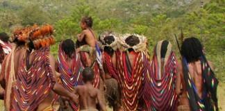 Noken, Tas Serbaguna Berbahan Serat Kayu dari Papua