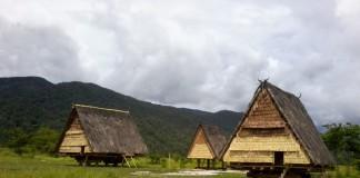 Rumah Tambi, Rumah Tradisional Suku Lore, Sulawesi Tengah