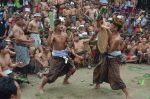 Tradisi Perang Pandan di Desa Tenganan Pegringsingan.