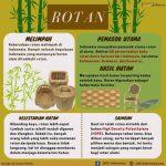 Infografis Rotan