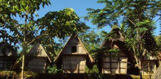 Jajaran leuit (lumbung padi) di Kasepuhan Ciptamulya, Sukabumi, Jawa Barat