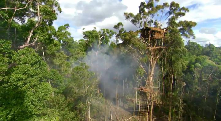 Rumah Pohon Suku Korowai di Papua