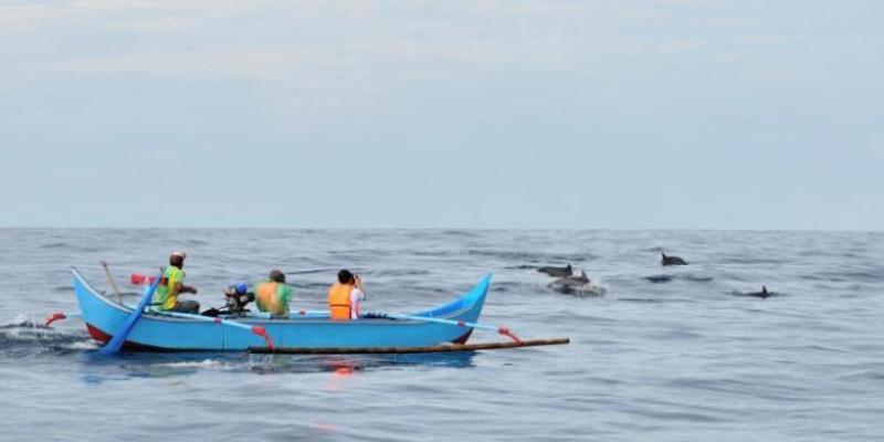 Para pengunjung menyaksikan atraksi lumba-lumba di Teluk Kiluan