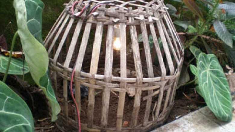 Ritual Mitoni