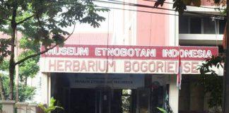 Museum Etnobotani Indonesia